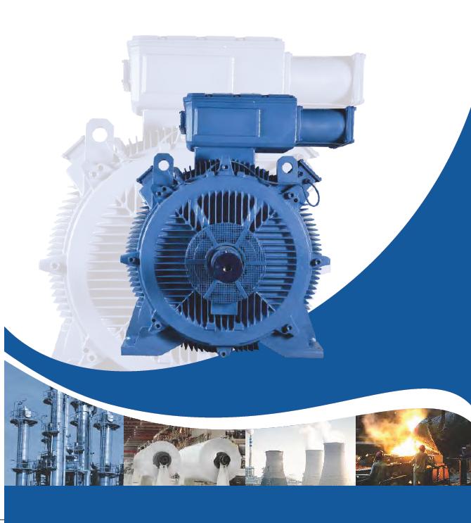 Bharat Bijlee -低压电机LV MOTORS